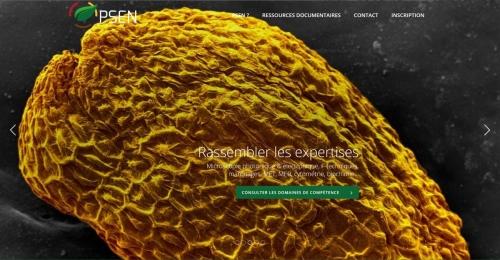 PSEN, un portail de ressources