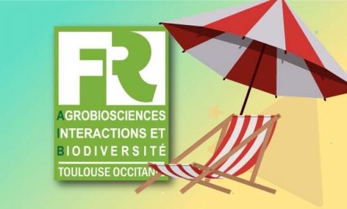 grmarc / Freepik (transat & parasol)
