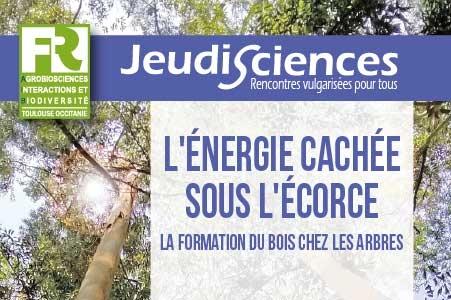 F. Mounet : L'énergie cachée sous l'écorce