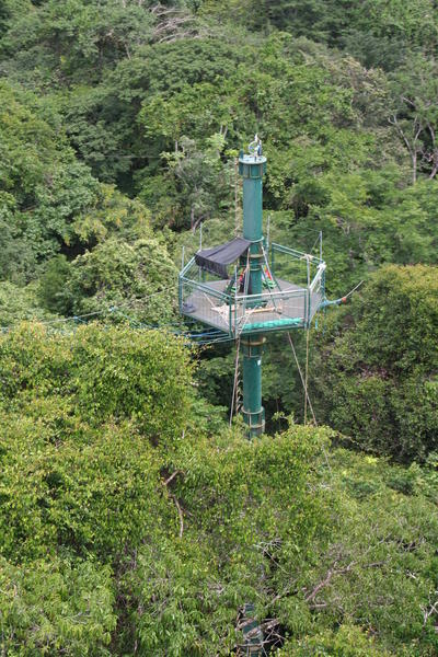 Un des pylônes du dispositif permanent d'accès à la canopée Copas<br> à Saut Pararé, en Guyane. P. Charles-Dominique - CNRS