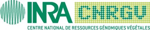 logo CNRGV